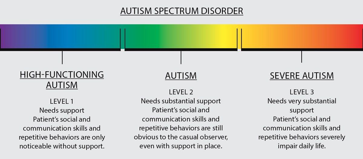 Autism Spectrum Disorder Levels